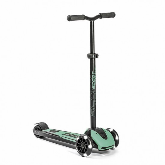 Scoot and Ride Highwaykick 5 LED (Forest)
